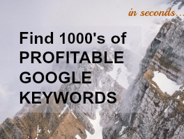 Find profitable google keywords with the Best SEO Checker Online, SEcockpit