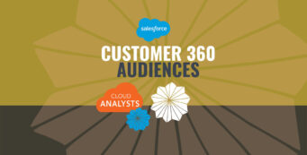 What is Salesforce Customer 360 Audiences