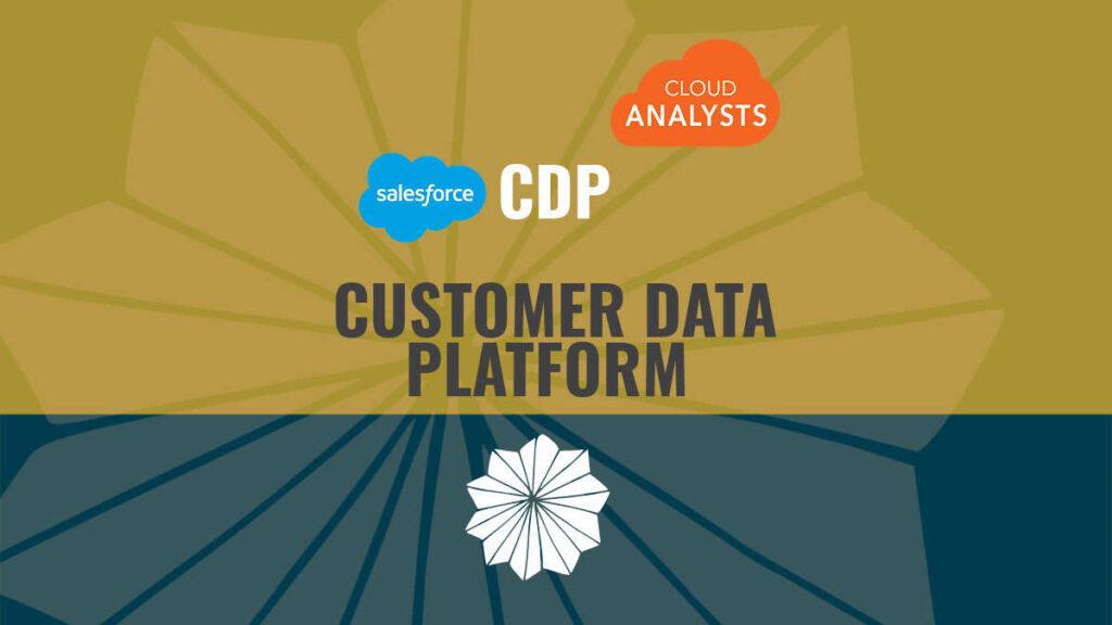 Salesforce CDP Customer Data Platform